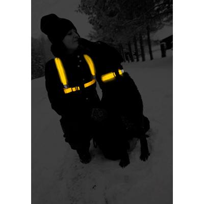 Protector LED vest