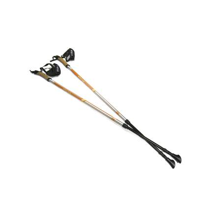 EX-Pole Alu Adjustable Orange
