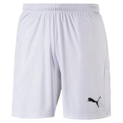 LIGA Shorts Core with Brief